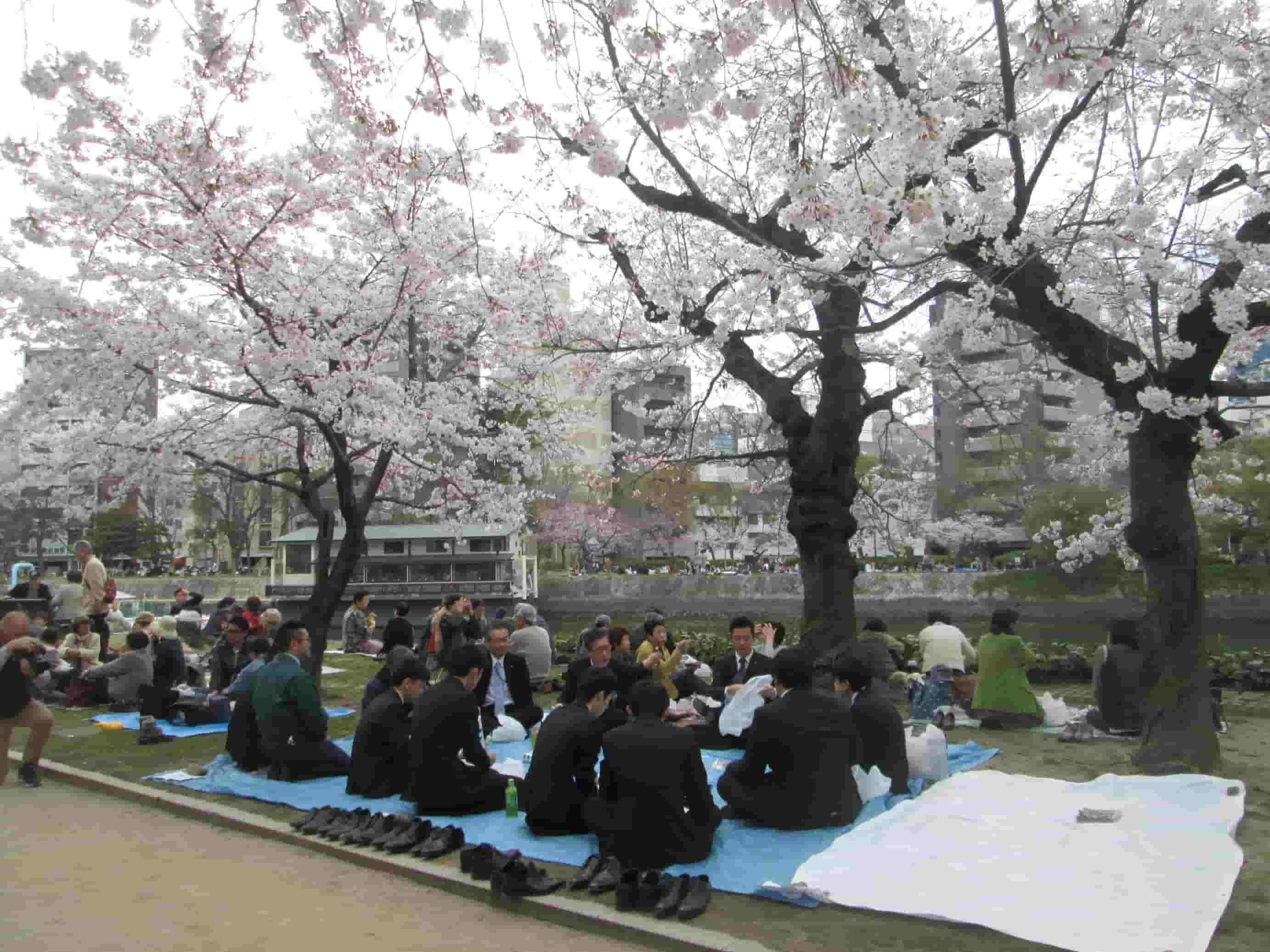 Hanami ad Hiroshima