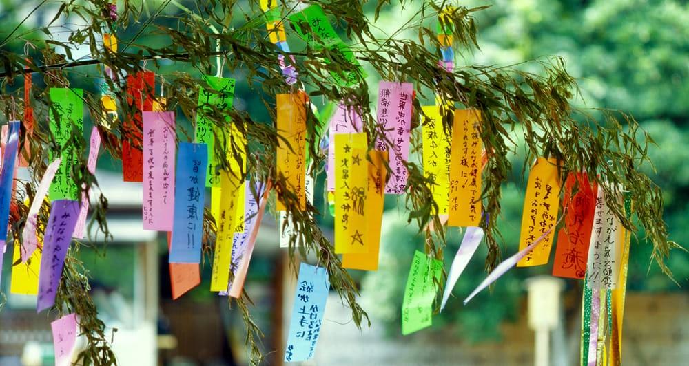 Tanabata Matsuri tanzaku appesi