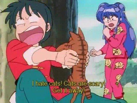 Paura dei gatti negli anime