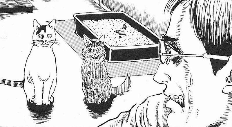 Trama Junji Ito's Cat Diary
